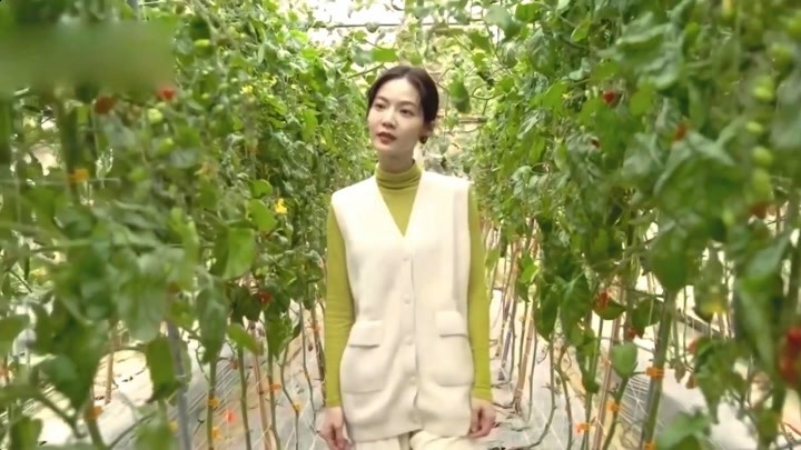 曾之乔柯佳嬿+绿涩植物